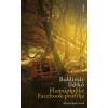 Boldizsár Ildikó Hamupipőke Facebook-profilja