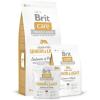 Brit Care Grain-Free Senior Salmon & Potato 12kg