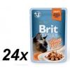 Brit Premium Cat Delicate Fillets in Gravy with Turkey 24 X 85 g