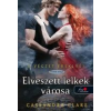 Cassandra Clare ELVESZETT LELKEK VÁROSA - A VÉGZET EREKLYÉI 5. - KEMÉNY KÖTÉS