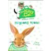 Cerkabella Könyvkiadó Jane Clarke: Dr KittyCat mentésre készen - Pitypang nyuszi