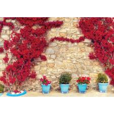 Consalnet Falra futott virágok 3579 több méretben, alapanyagban tapéta, díszléc és más dekoráció