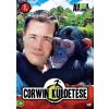 CORWIN KÜLDETÉSE 1. - DVD -