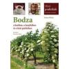 Cser Kiadó Bezselics Ildikó - Kohut Ildikó: Bodza a kertben, a konyhában és a házi patikában - Növények és receptek