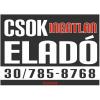 CSOK ingatlan eladó színes felirat, matrica, tábla, ponyva 80×58 cm (fekete-fehér-piros)