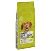 Dog Chow 2x14kg Purina Dog Chow Adult bárány & rizs száraz kutyatáp