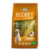 Ecopet Natural Adult Lamb 2 x 12 kg