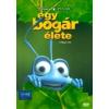 Egy bogár élete (DVD)