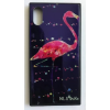 egyéb BH692 Telefon tok BLU-RAY Üveg Bird Black Samsung S9 Plus