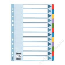 """ESSELTE Regiszter, laminált karton, A4 Maxi, 1-12, ESSELTE """"Mylar"""" regiszter és tartozékai"""