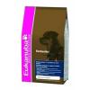 Eukanuba Adult Rottweiler