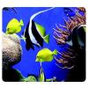 """FELLOWES Egéralátét, újrahasznosított, FELLOWES """"Earth Series™"""", tengeri halak"""
