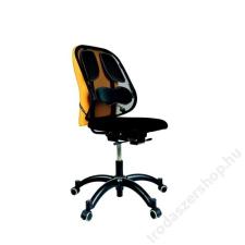 FELLOWES Háttámasz, FELLOWES Professional Series™ Mesh (IFW80299) asztali számítógép kellék