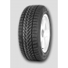 FIRESTONE WinterHawk DOT13 175/65 R13