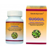 Garuda Ayurveda Guggul testsúlykontroll vegán kapszula 60 db