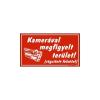 GUNGL DEKOR PIKTOGRAM KAMERÁVAL MEGFIGYELT TERÜLET PIROS