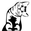 Gungldekor Aranyos cica 2 db plottervágott autós matrica applikáló fóliával