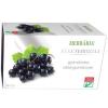 Herbária feketeribizli gyümölcstea 20db