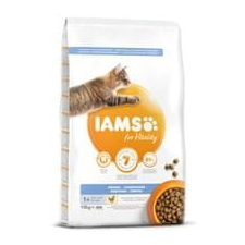 IAMS Cat Adult Dental Chicken 10 kg macskaeledel