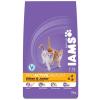 IAMS Cat Kitten csirke 10kg