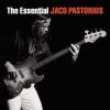 Jaco Pastorius The Essential Jaco Pastorius CD