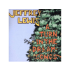 Jeffrey Lewis A Turn in The Dream-Songs (CD)