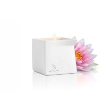 Jimmy Jane - masszázsgyertya (lótusz virág) masszázsolaj és gél