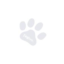 Josera YoungStar 5x0,9kg kutyaeledel