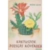 Kaktuszok, pozsgás növények