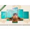 Képáruház.hu Premium Kollekció: Endangered Hawaiian Green Sea Turtle cruises in the warm waters(135x70 cm, S01 Többrészes Vászonkép)