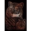 Képkarcoló készlet karctűvel - 13x18 cm - Réz - Tigrisek