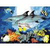 Kifestő készlet akrilfestékkel, ecsettel, gyerekeknek 11 éves kortól - 30x40 cm - Delfinek