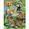 Kifestő készlet akrilfestékkel, ecsettel, gyerekeknek 8 éves kortól - 20x25 cm - Dzsungel