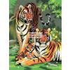 Kifestő készlet akrilfestékkel, ecsettel, gyerekeknek 8 éves kortól - 20x25 cm - Tigrisek