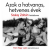 Kossuth Azok a hatvanas, hetvenes évek - Szalay Zoltán fotóalbuma (új példány)