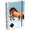 Lizzy Card GEO: barna lovas füzetbox - A4, fekete