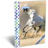 LizzyCard Füzet spirál A/4 kockás GEO Horse One 17020206