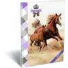 LizzyCard Füzet spirál A/4 vonalas GEO Horse Two 17146007