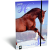 LizzyCard Gumis mappa A/4 Kis bagoly Horse Delightful 18575417