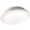 Massive - Philips 32200/17/16 - Fürdőszobai mennyezeti lámpa MyBathroom 1x2GX13/40W