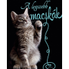 Móra Kiadó A legszebb macskák