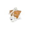 My family biléta - Jack Russel Terrier 1 db - drótszőrű (MF100)