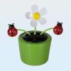 Napelemes mozgó virág katicával