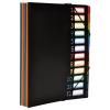 """Nebuló """"Irattartó mappa, gumis, 12 részes, VIQUEL """"""""Rainbow Class"""""""", fekete"""""""