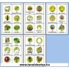 Ostern (Húsvét) Német nyelvű TanulóKártya Csomag - 178db-os készlet
