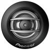 Pioneer TS-A300TW
