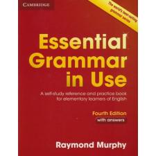 Raymond Murphy: English Grammar in Use Fourth Edition with eBook and anwsers idegen nyelvű könyv