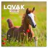 REALSYSTEM Falinaptár 2018 - Horses – LOVAK 2018, 30 x 30 cm