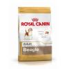 Royal Canin Beagle Adult kutyatáp 3×12kg Akció!