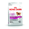 Royal Canin Indoor Adult S 500g